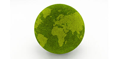 Green-Grass-Globe-(2)_WEB