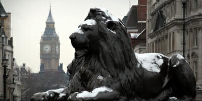 big-ben,-lion
