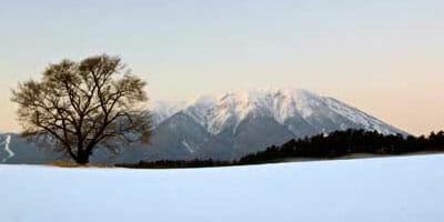 131129_Snow