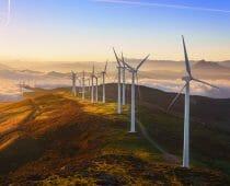 Wind farm (2)